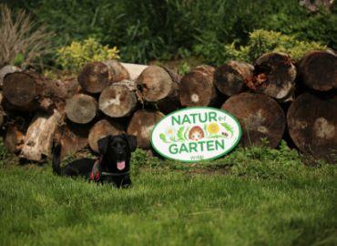 Hundestaffel zu Besuch im Natur im Garten Schaugarten in Wien