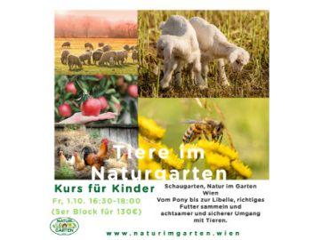 Tiere im Naturgarten - Kurs