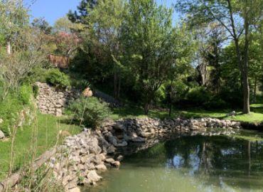 Was tut sich im Natur im Garten Wien - Schaugarten