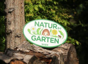 Besuch im Schaugarten Natur im Garten Wien